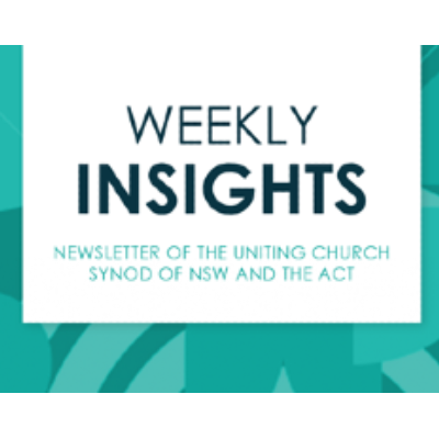 Weekly Insights Newsletter