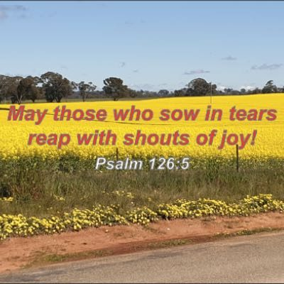 Canola field - Psalm 126:5